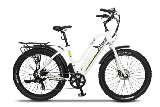 EMOJO PANTHER with Rear Rack and Metal Fender Set
